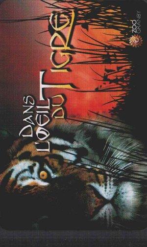 В глазах льва