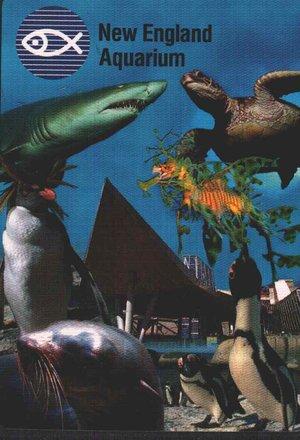 Аквариум New England