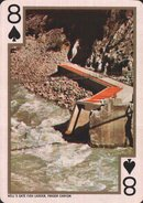 8 spades