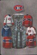Коллекция свитеров Монреаль Канадиенс